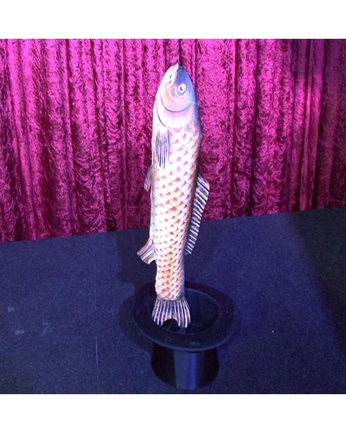 Srednje velika riba iz klobuka